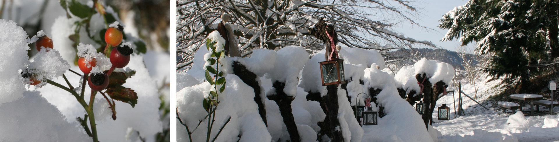 Der Garten direkt am Winzerpfad ideal für Spaziergänge