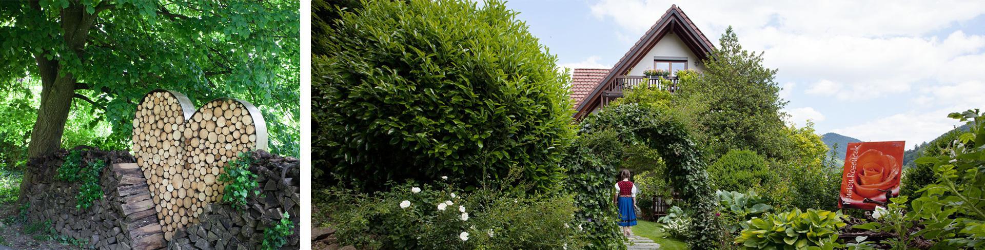 Blick vom Waldrand in den Garten des Rosenecks