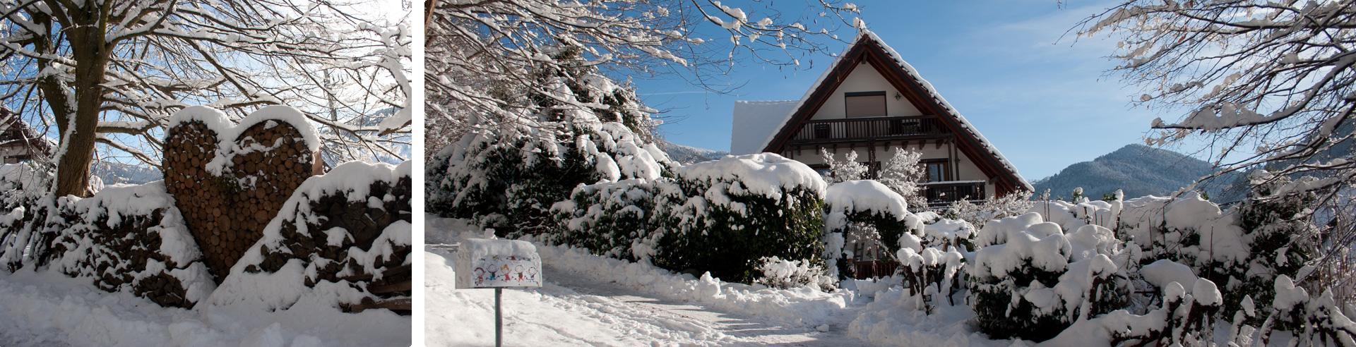 Das Roseneck im Schnee