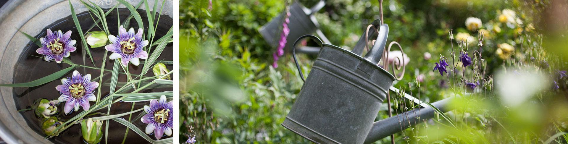 Viele Details schmücken den Garten