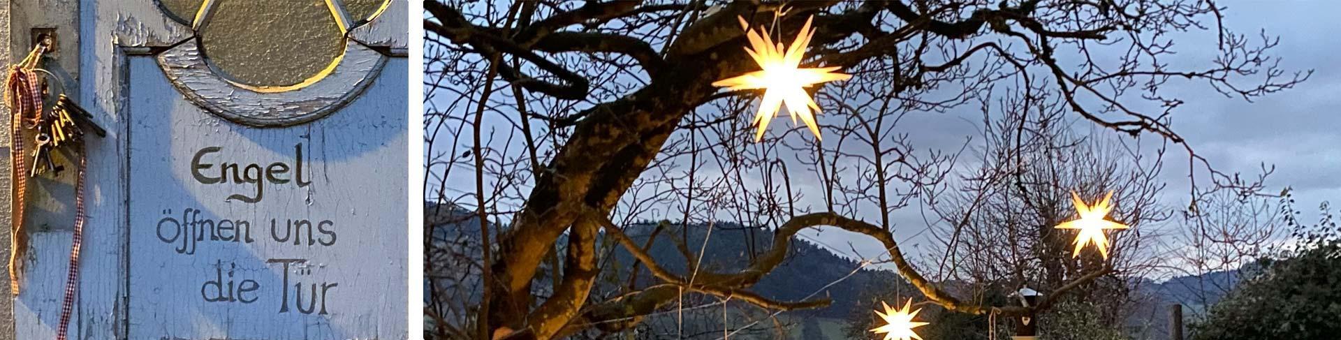 Garten mit leuchtenden Sternen am Baum