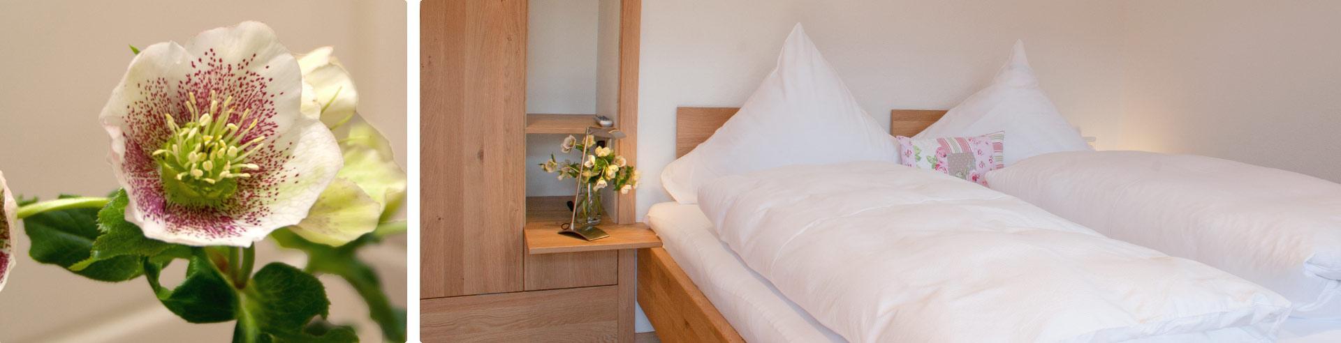 Appartement mit modernem Bad, Küche und Wohnzimmer