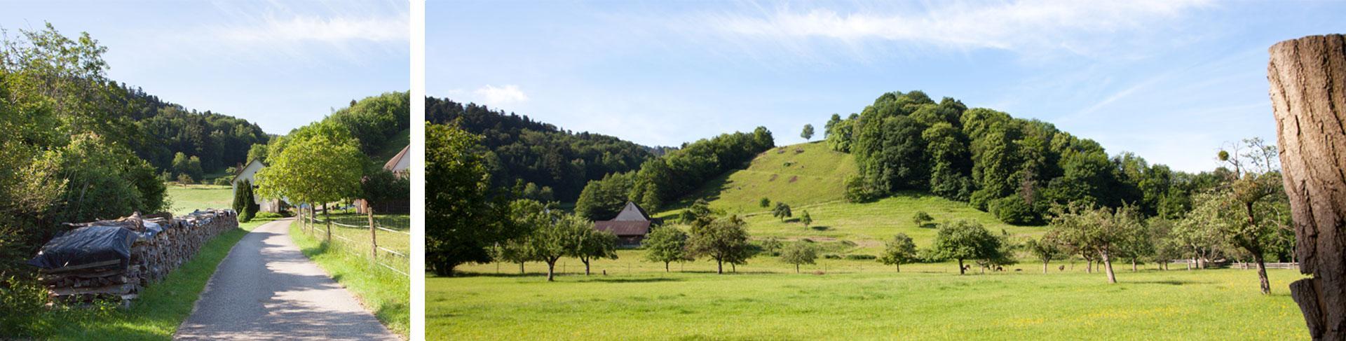 oder bei einem Spaziergang durch das Tal