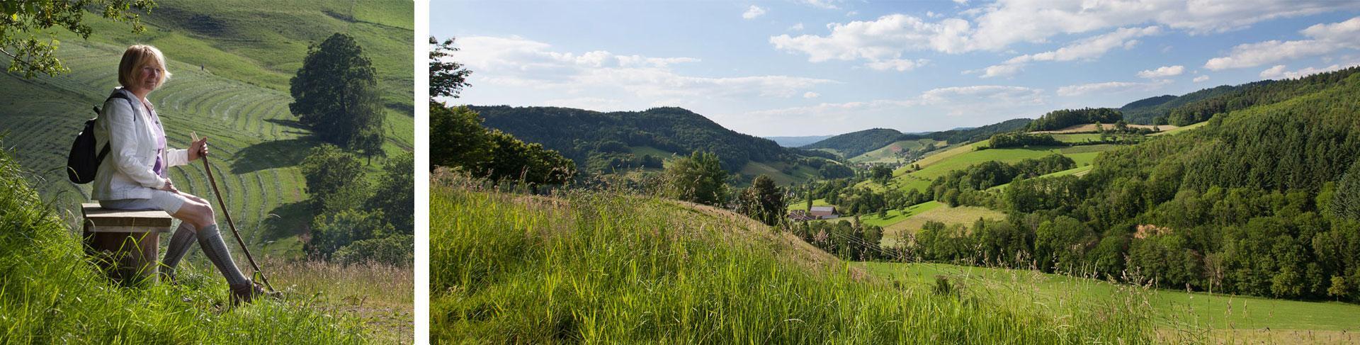 Ausblick bei einer Wanderung vom Berg ins Tal hinein