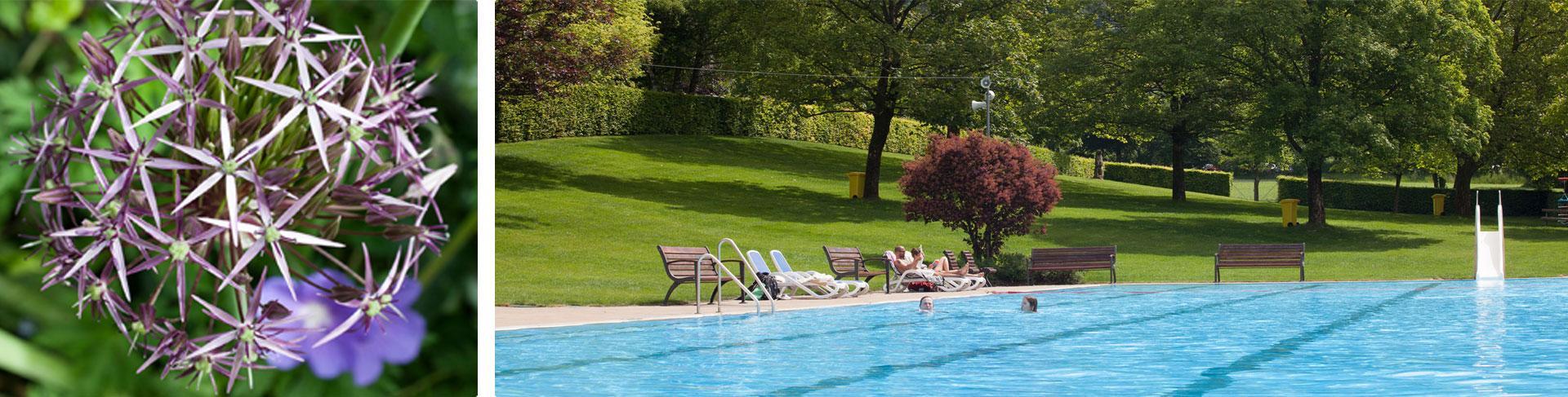 Ansicht des schönen Glottertäler Schwimmbads, dass nur wenige Gehminuten vom Roseneck entfernt ist