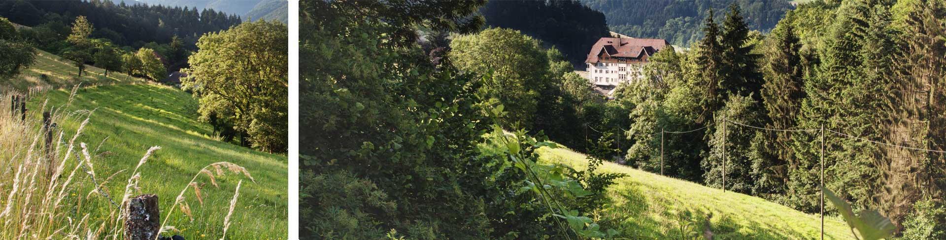 Entdecken Sie Glottertal und die weltberühmte Schwarzwaldklinik bei einer Wanderung